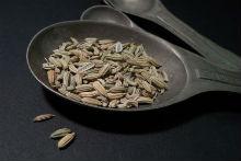 fennel-seeds-220x147.jpg